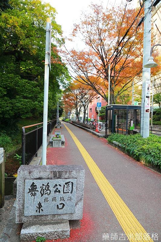 Kyushu_161113_199.jpg