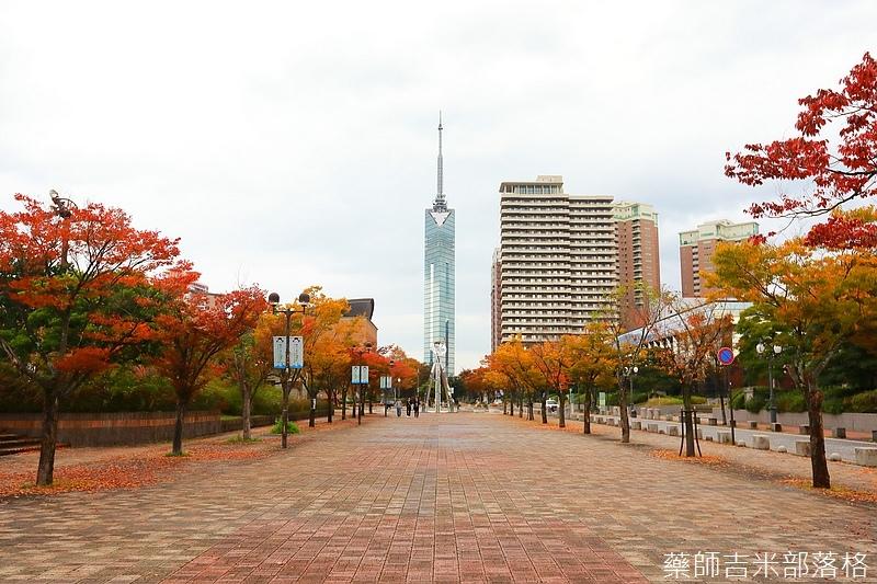 Kyushu_161114_172.jpg