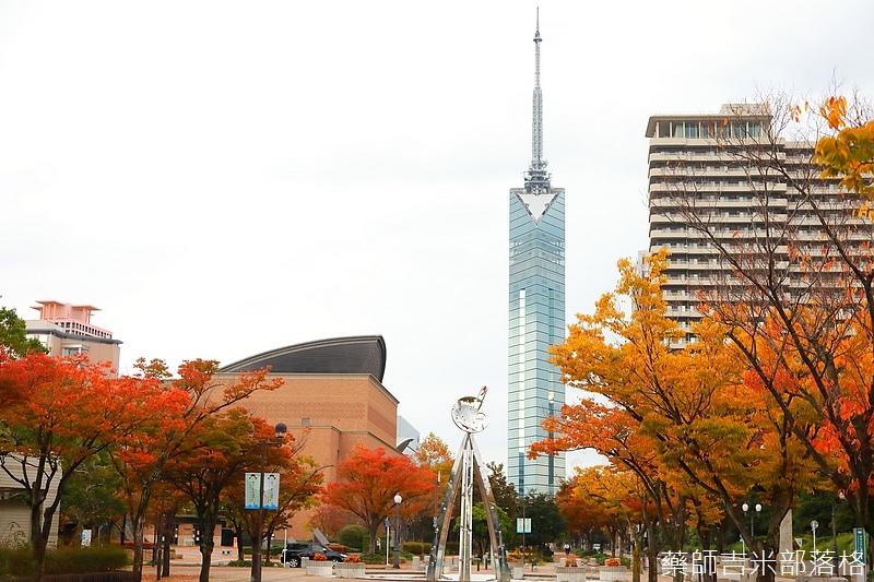 Kyushu_161114_183.jpg