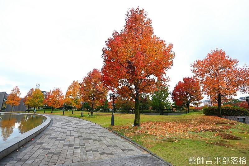 Kyushu_161114_189.jpg