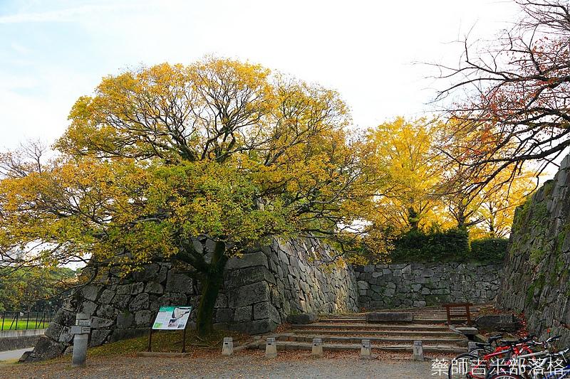 Kyushu_161113_230.jpg