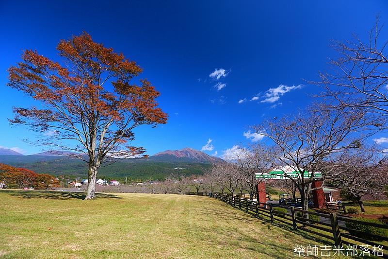 Kyushu_161111_276.jpg