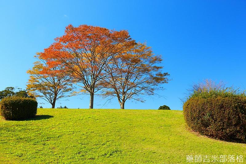 Kyushu_161111_281.jpg
