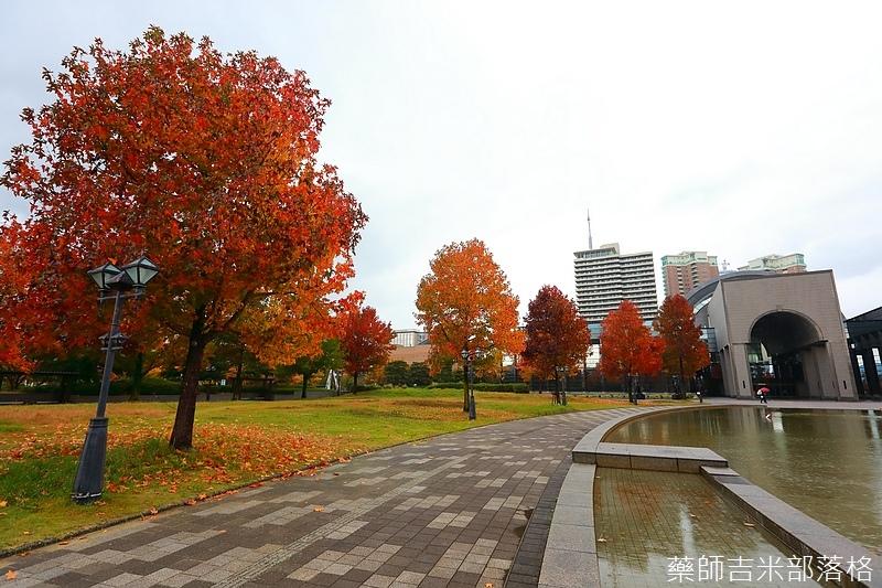 Kyushu_161114_203.jpg
