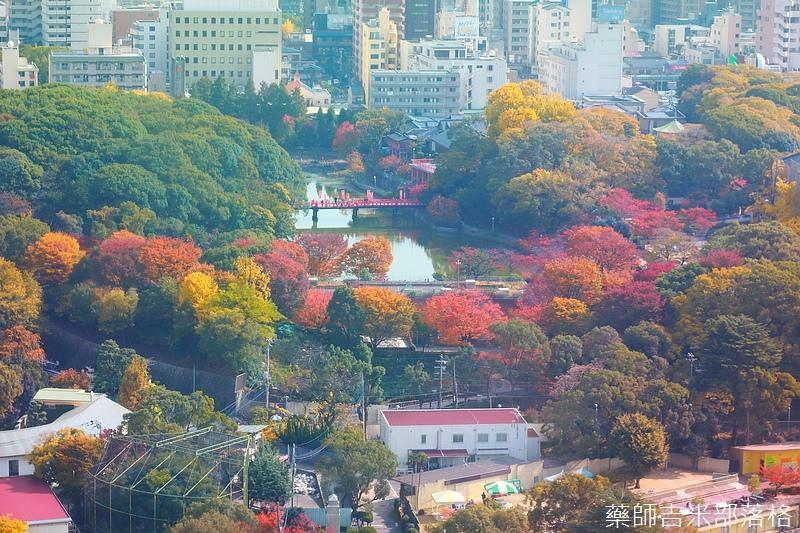Osaka_161117_077.jpg