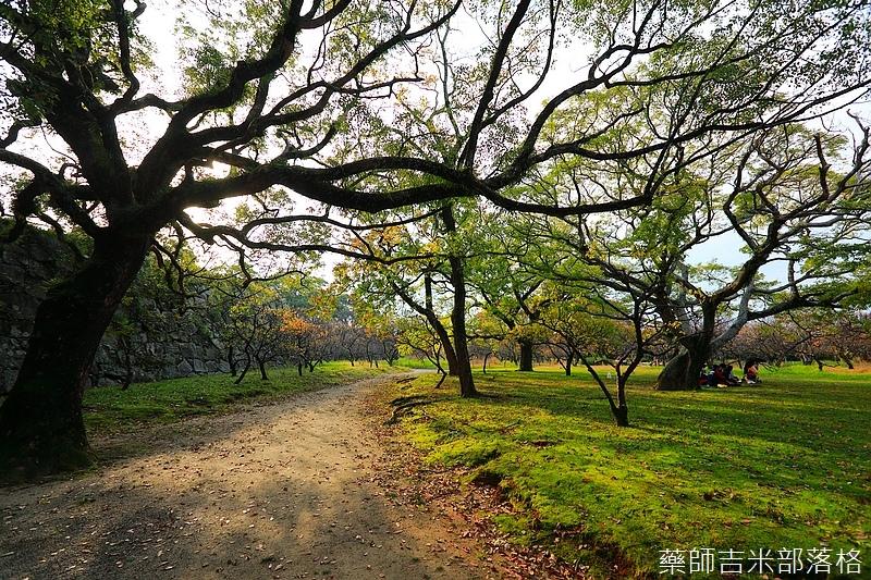 Kyushu_161113_250.jpg
