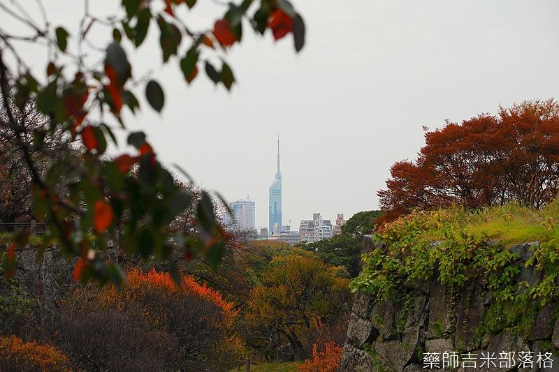 Kyushu_161113_272.jpg