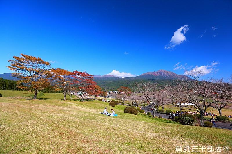 Kyushu_161111_308.jpg