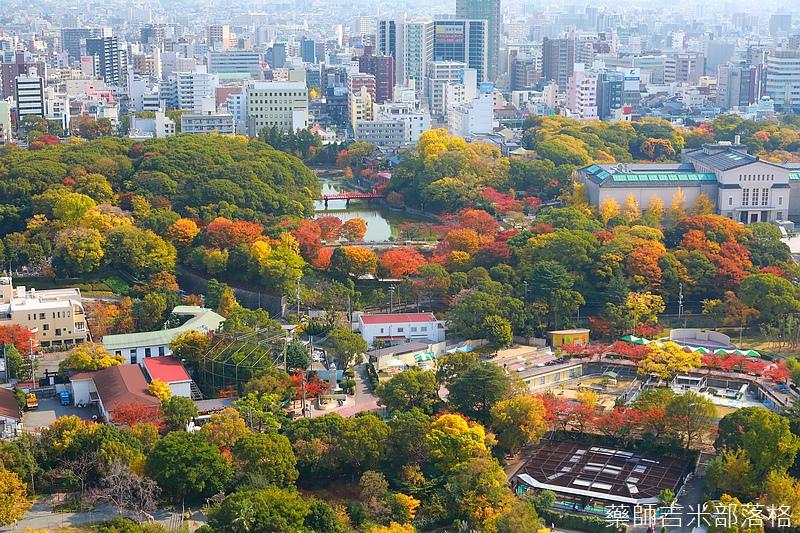 Osaka_161117_110.jpg