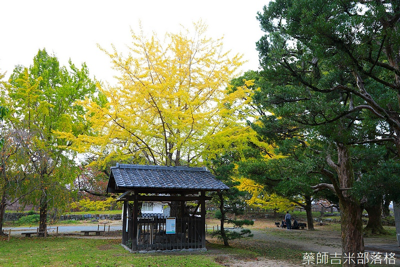 Kyushu_161113_278.jpg