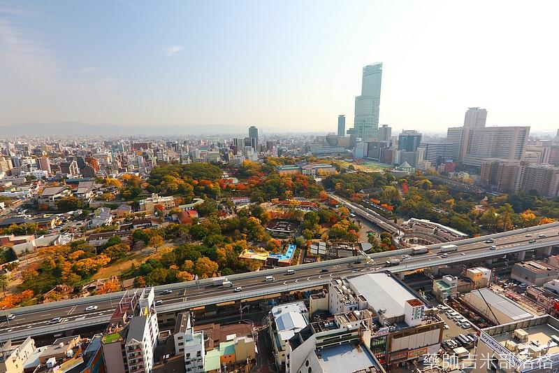 Osaka_161117_116.jpg