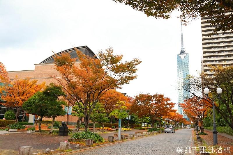 Kyushu_161114_275.jpg