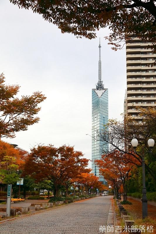 Kyushu_161114_280.jpg