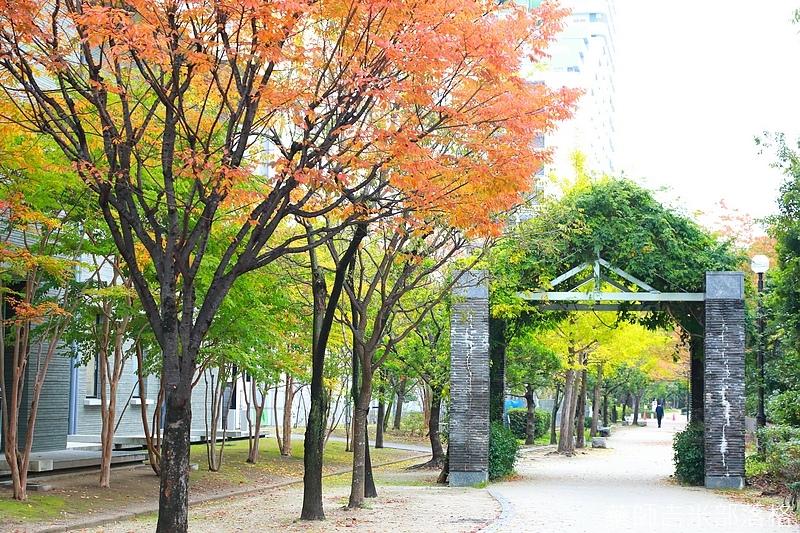 Kyushu_161114_290.jpg