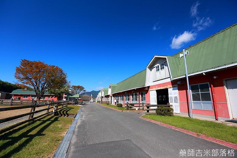 Kyushu_161111_355.jpg
