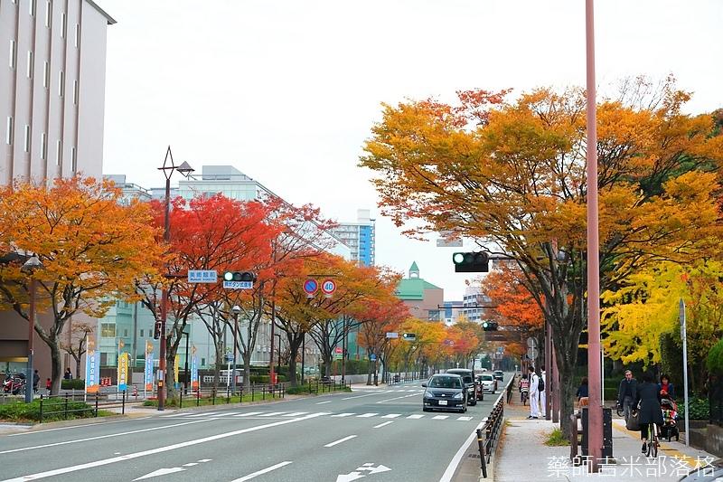 Kyushu_161113_479.jpg