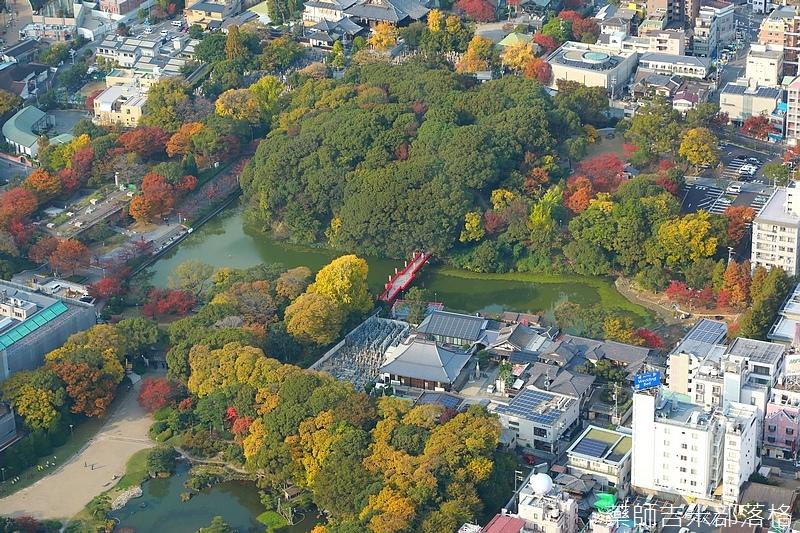 Osaka_161117_367.jpg