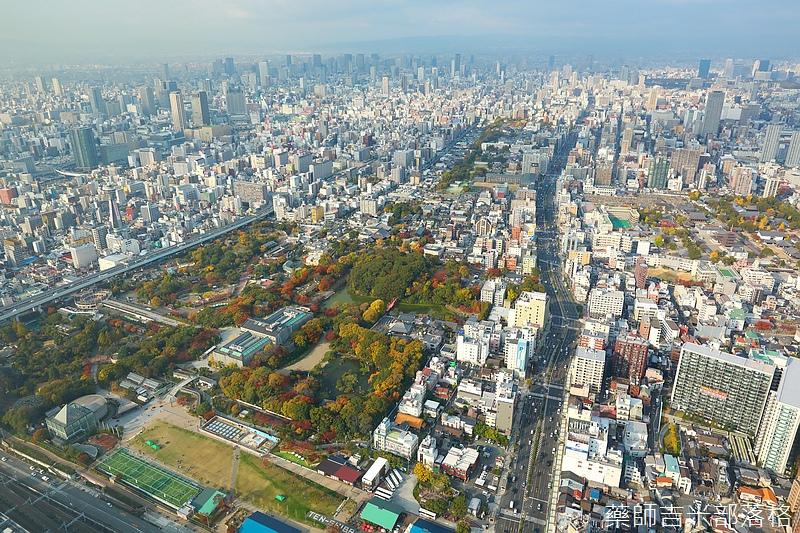 Osaka_161117_375.jpg