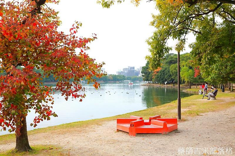 Kyushu_161113_542.jpg