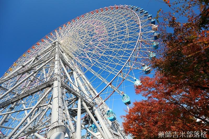 Osaka_161118_301.jpg