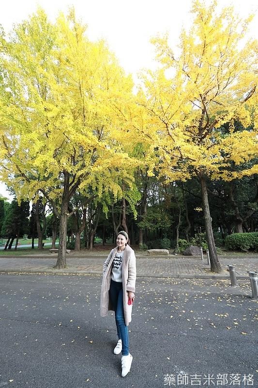 Osaka_161118_469.jpg