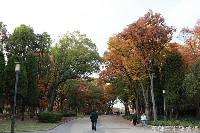 Osaka_161118_474.jpg