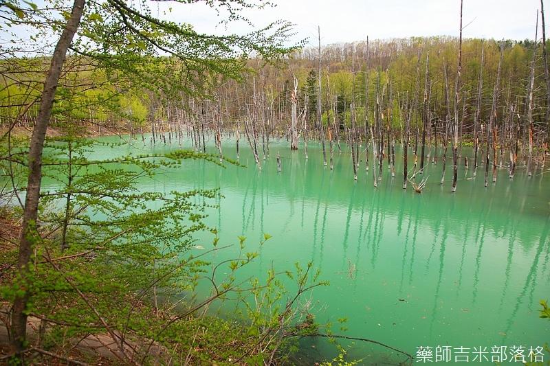 Hokkaido_06_102.jpg