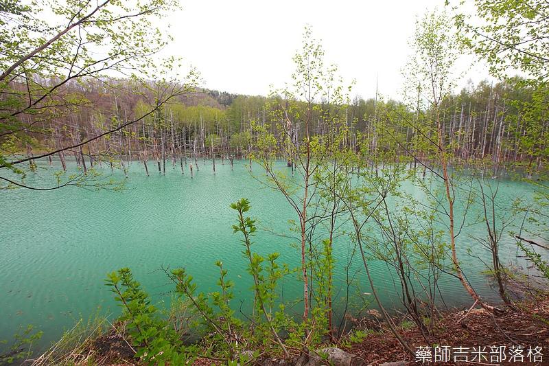 Hokkaido_06_124.jpg