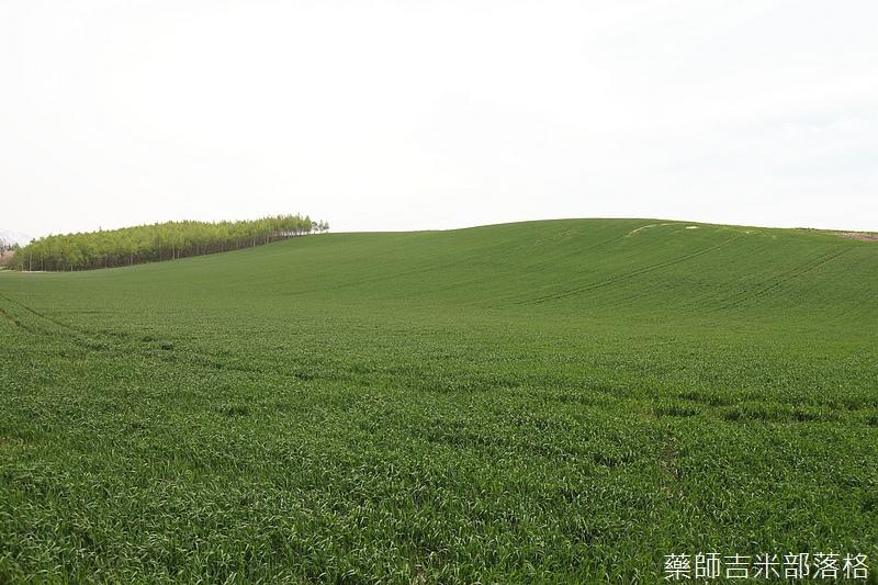 Hokkaido_06_194.jpg