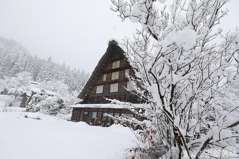 Shirakawa_170113_489.jpg