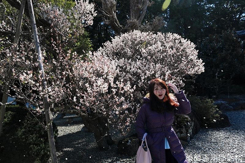 Narita_1702_0364.jpg