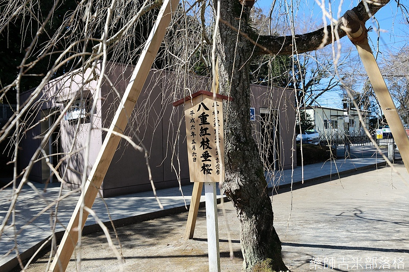 Narita_1702_0383.jpg