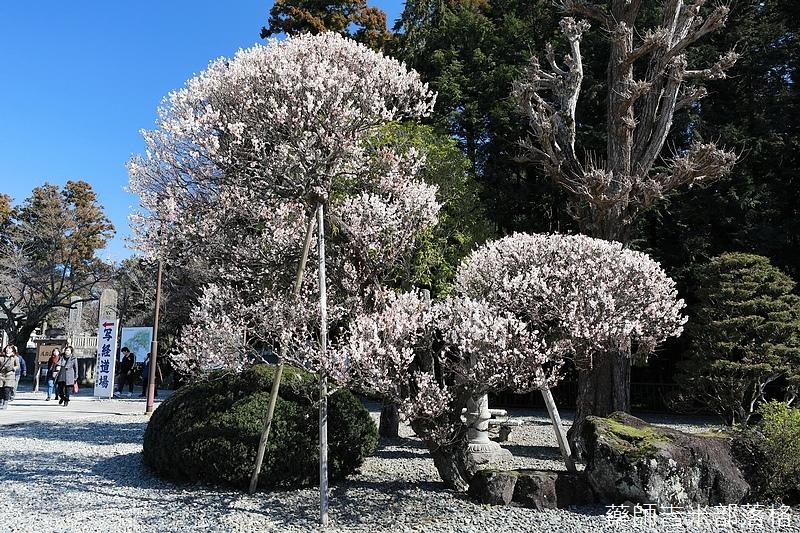 Narita_1702_0522.jpg
