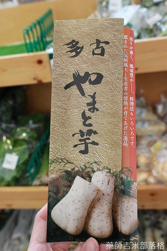 Narita_1702_1341.jpg