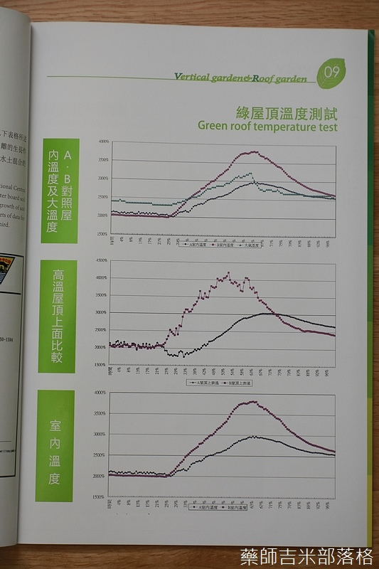 Green_Wall_143.jpg