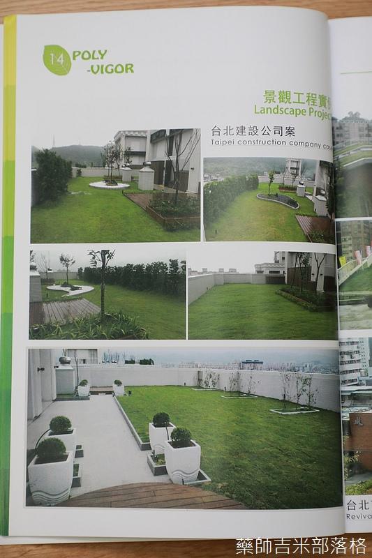 Green_Wall_146.jpg