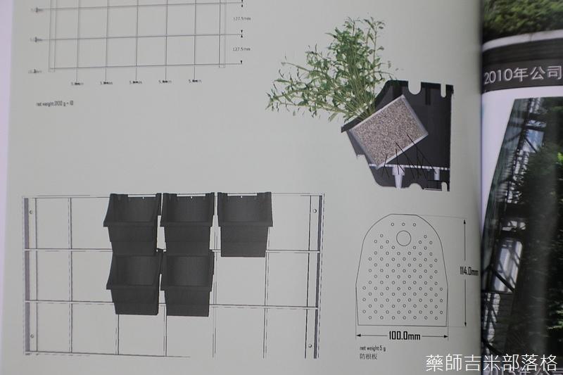 Green_Wall_159.jpg