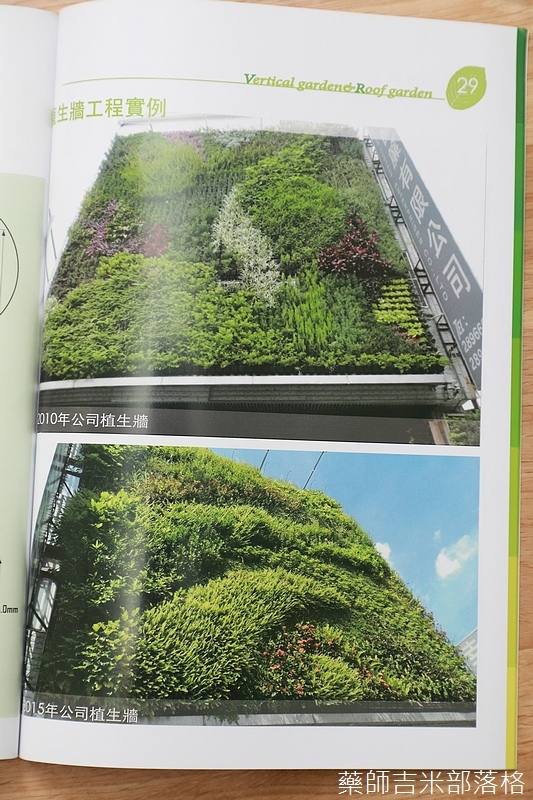 Green_Wall_160.jpg