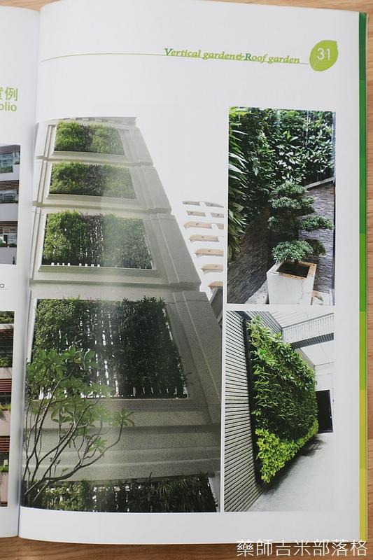 Green_Wall_162.jpg