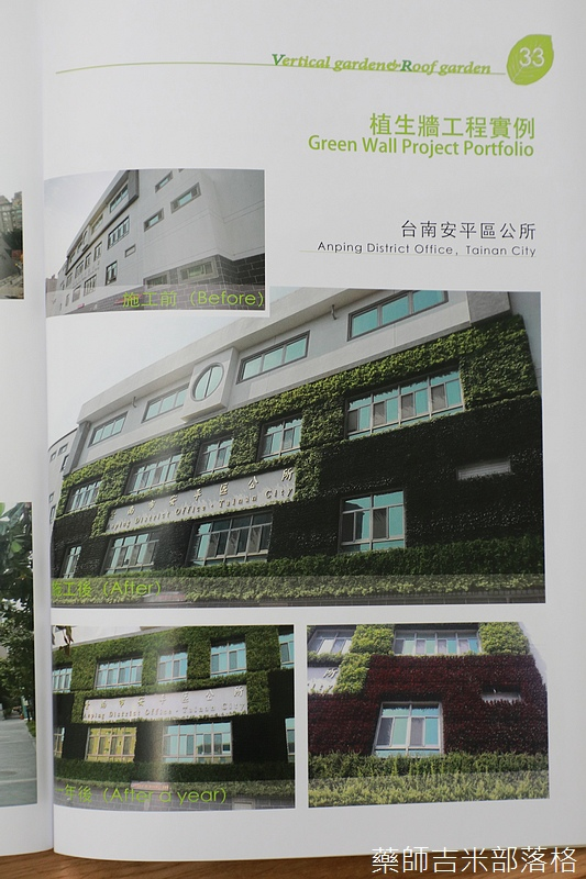 Green_Wall_164.jpg