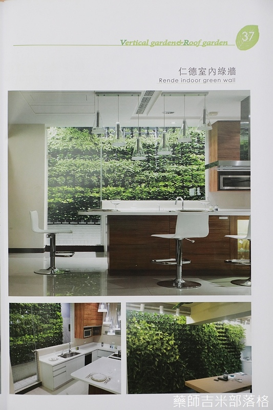 Green_Wall_167.jpg