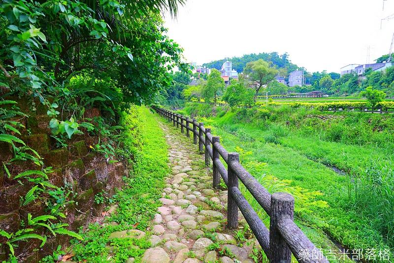 Taoyuan_209.jpg