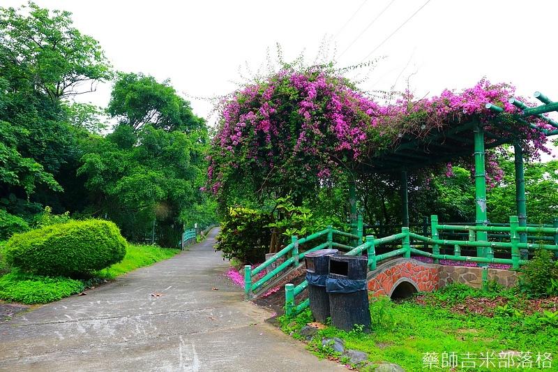 Taoyuan_278.jpg