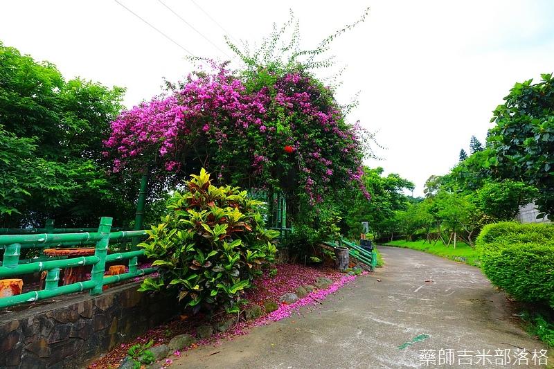 Taoyuan_281.jpg