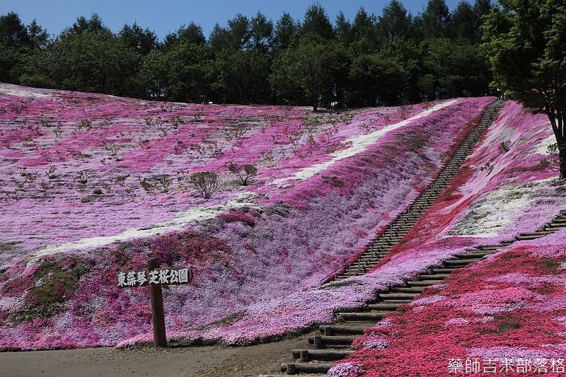Hokkaido_12_220.jpg
