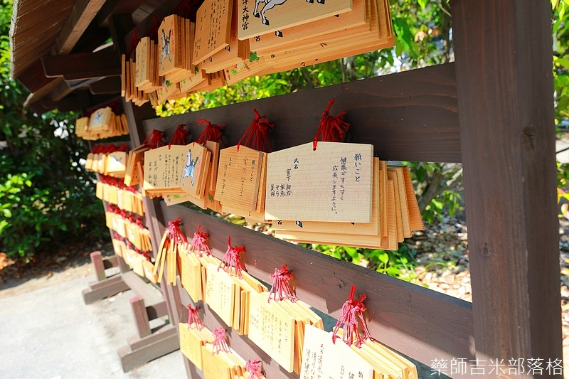 Kyushu_170614_315.jpg