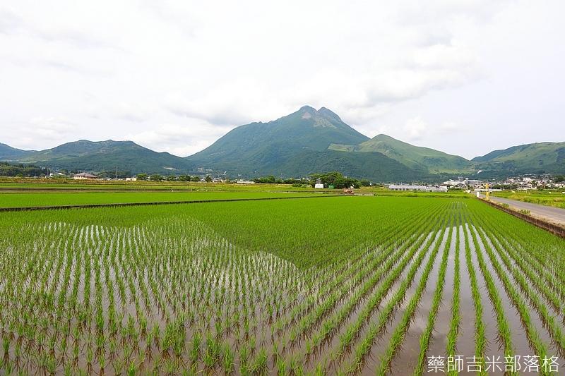Kyushu_170613_422.jpg