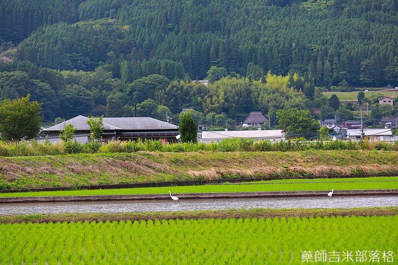 Kyushu_170613_441.jpg