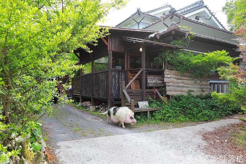 Kyushu_170613_454.jpg