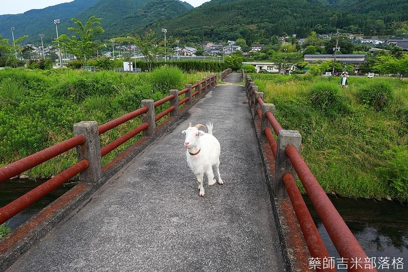 Kyushu_170613_504.jpg